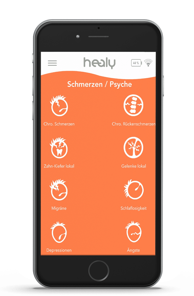 Healy Programmgrupe Schmerzen/Psyche
